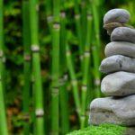 Śliczny oraz porządny zieleniec to zasługa wielu godzin spędzonych  w jego zaciszu w toku pielegnacji.